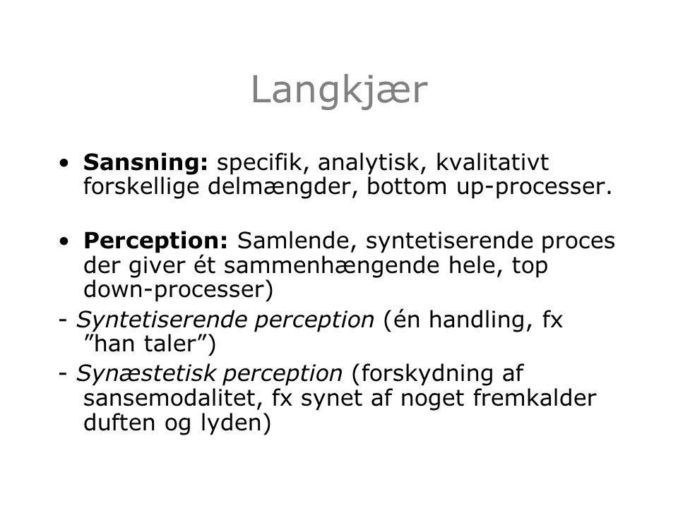 Langkjær Sansning: specifik, analytisk, kvalitativt forskellige delmængder, bottom up-processer.