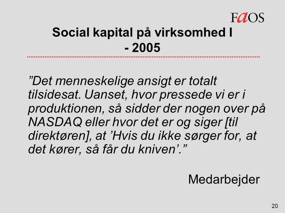 Social kapital på virksomhed I - 2005