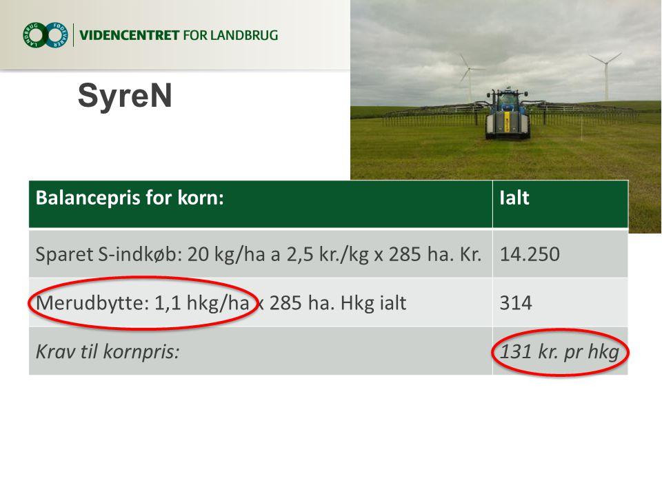 SyreN Balancepris for korn: Ialt
