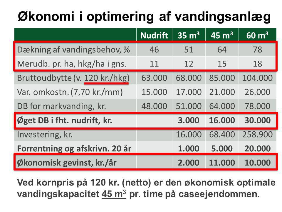 Økonomi i optimering af vandingsanlæg