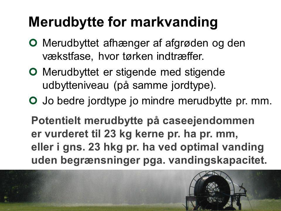Merudbytte for markvanding