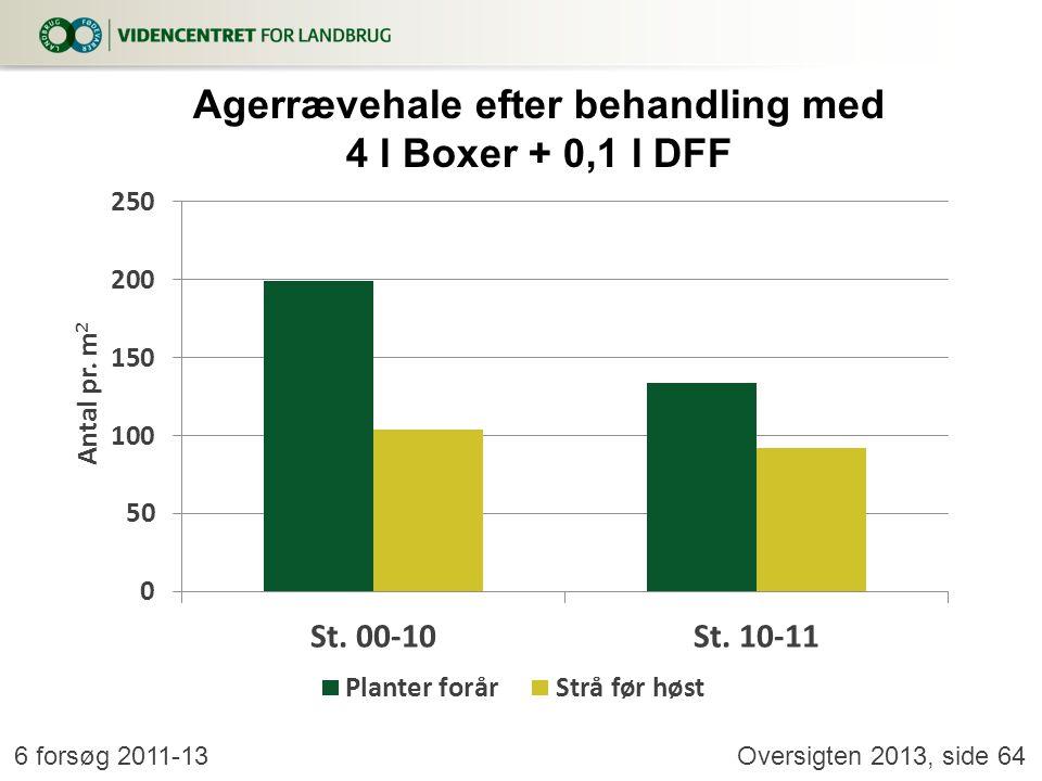 Agerrævehale efter behandling med 4 l Boxer + 0,1 l DFF
