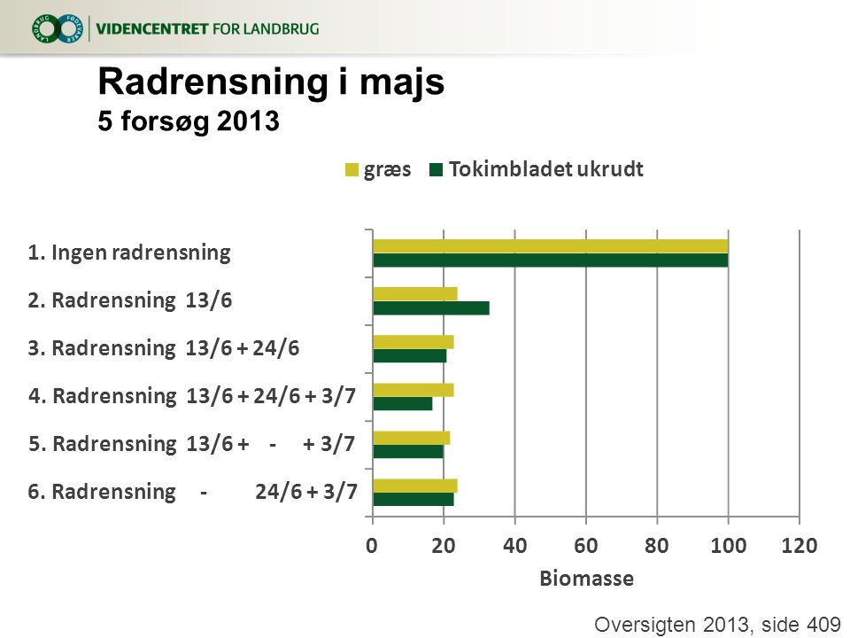 Radrensning i majs 5 forsøg 2013