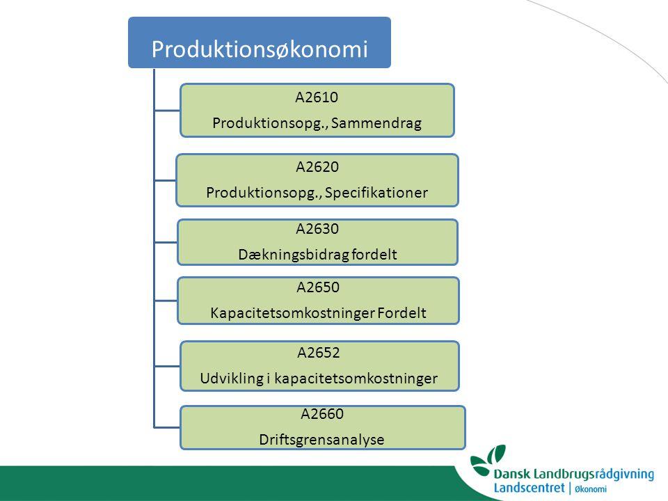Produktionsøkonomi A2610 Produktionsopg., Sammendrag A2620