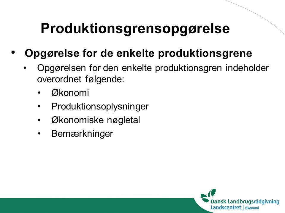 Produktionsgrensopgørelse