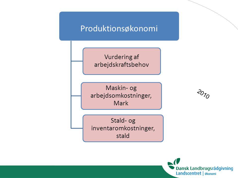 Produktionsøkonomi 2010 Vurdering af arbejdskraftsbehov