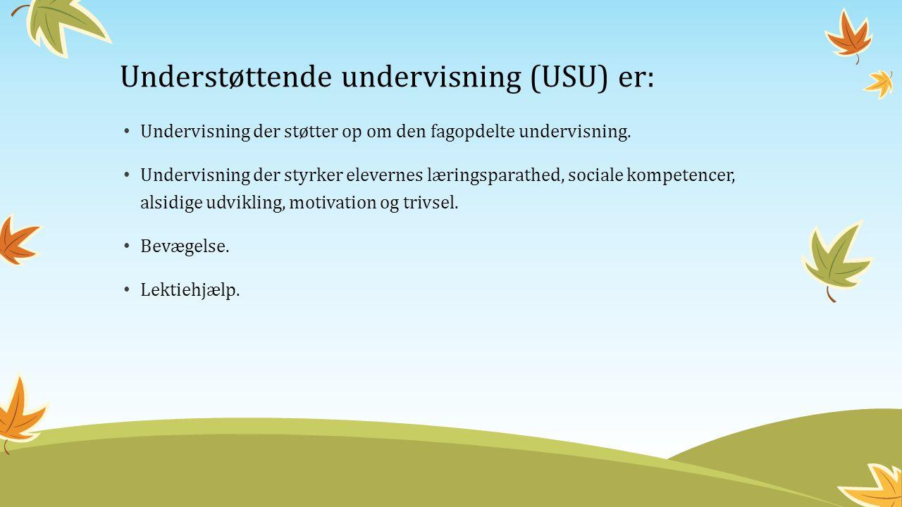 Understøttende undervisning (USU) er: