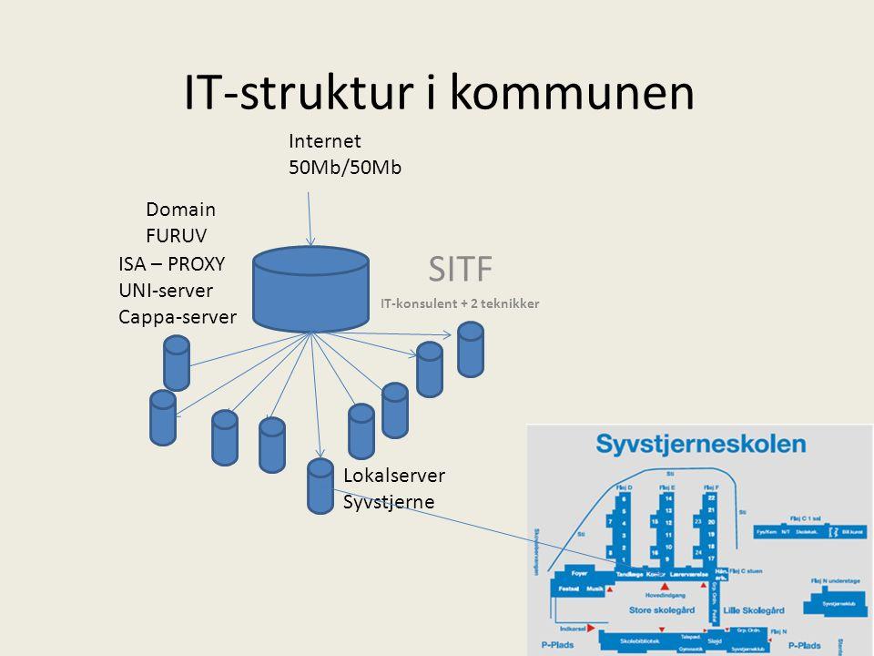 IT-struktur i kommunen