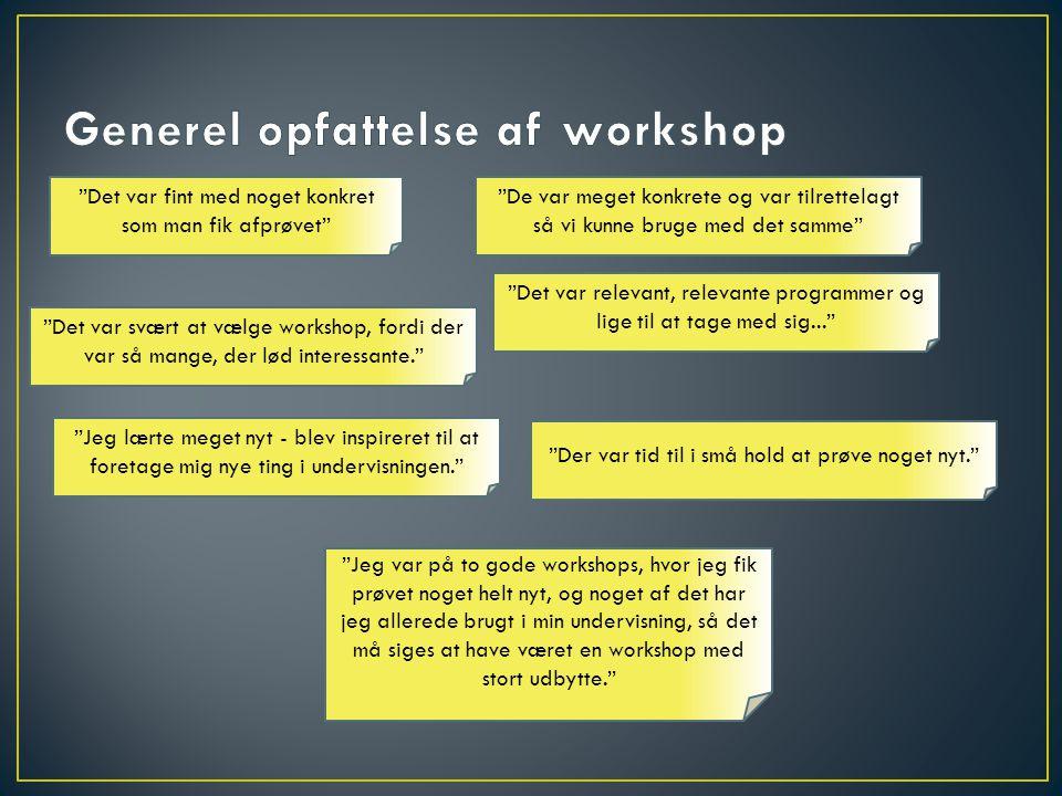 Generel opfattelse af workshop
