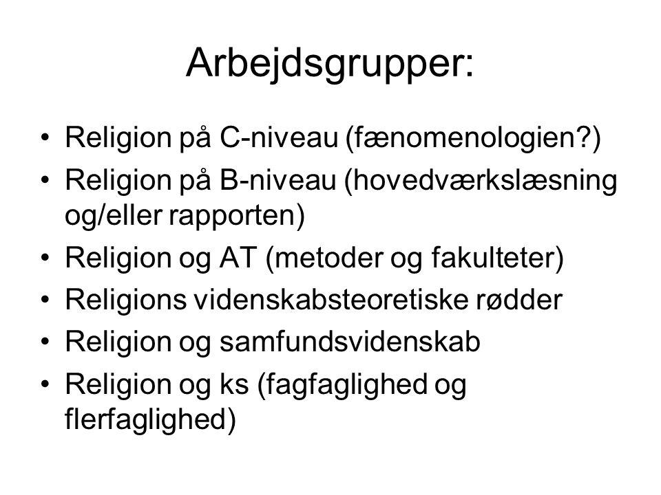 Arbejdsgrupper: Religion på C-niveau (fænomenologien )