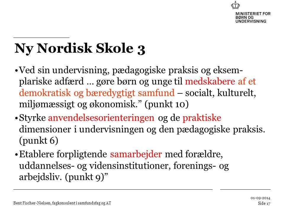 Ny Nordisk Skole 3