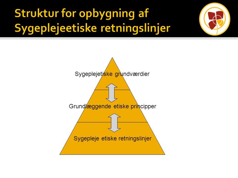 Struktur for opbygning af Sygeplejeetiske retningslinjer