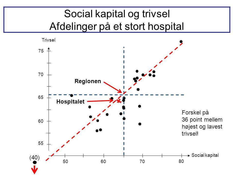 Social kapital og trivsel Afdelinger på et stort hospital