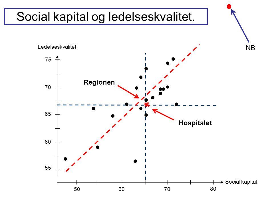 Social kapital og ledelseskvalitet.