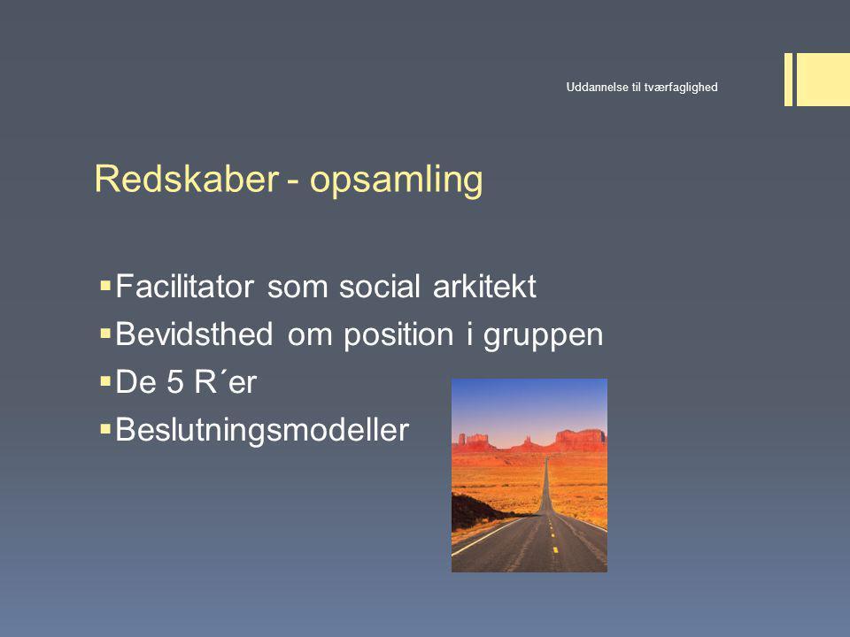 Redskaber - opsamling Facilitator som social arkitekt