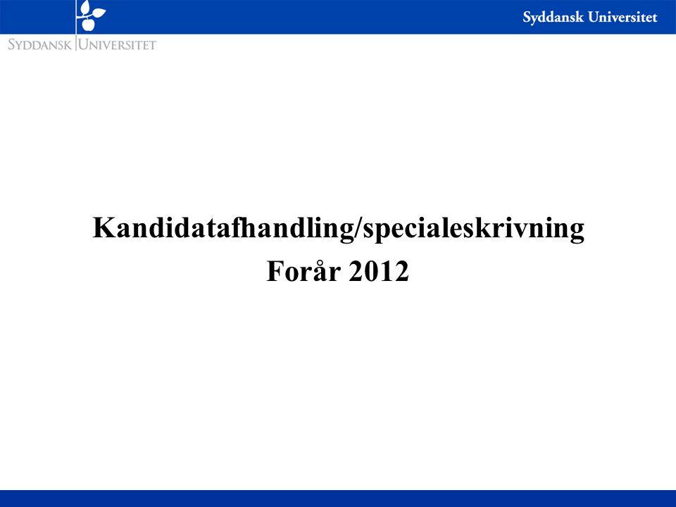 Kandidatafhandling/specialeskrivning