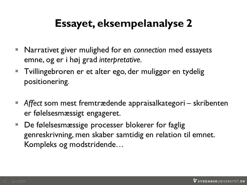 Essayet, eksempelanalyse 2