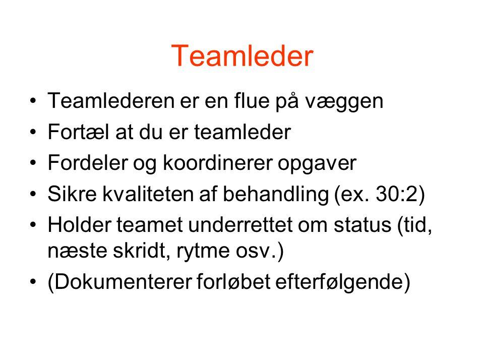 Teamleder Teamlederen er en flue på væggen Fortæl at du er teamleder