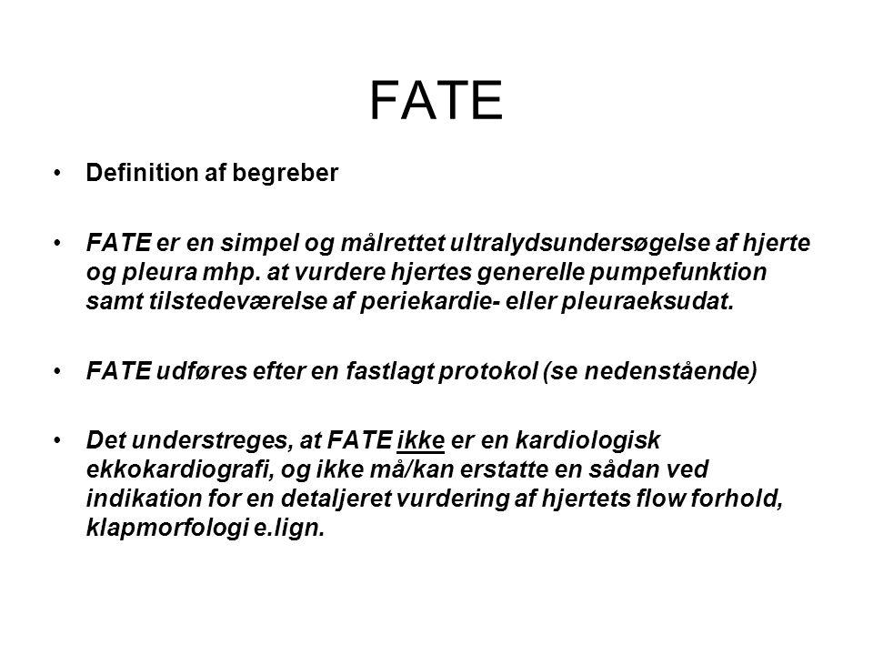 FATE Definition af begreber