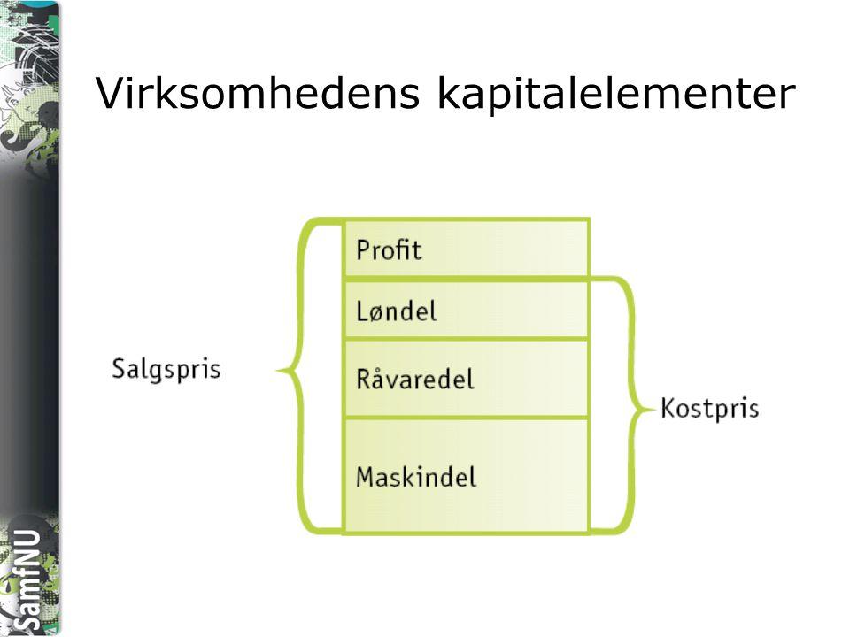Virksomhedens kapitalelementer