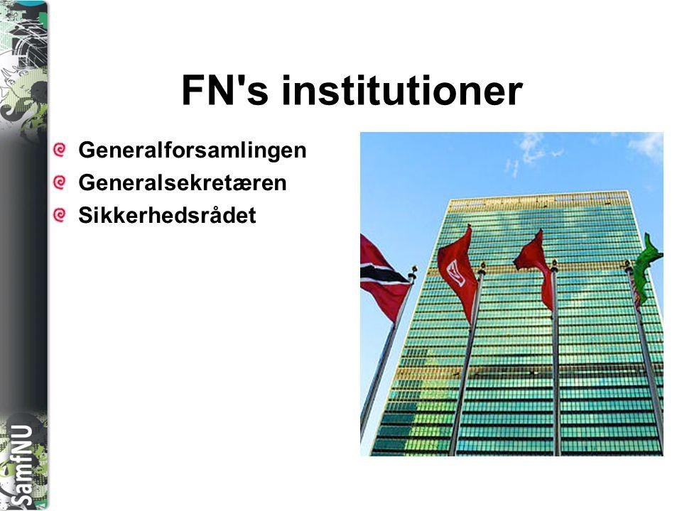 FN s institutioner Generalforsamlingen Generalsekretæren