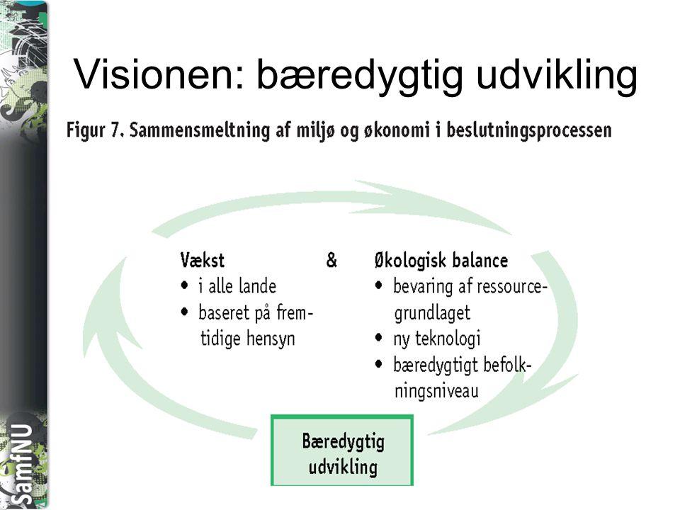 Visionen: bæredygtig udvikling