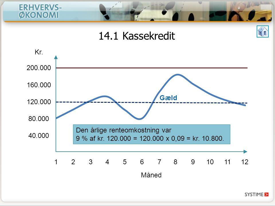14.1 Kassekredit Kr. 200.000. 160.000. 120.000. 80.000. 40.000. Gæld.