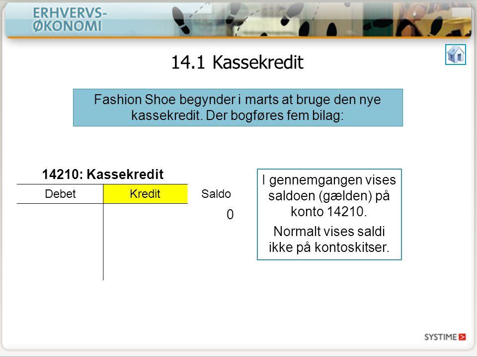 14.1 Kassekredit 14210: Kassekredit