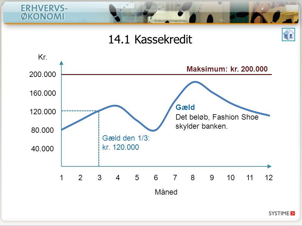 14.1 Kassekredit Kr. Maksimum: kr. 200.000 200.000 160.000 120.000