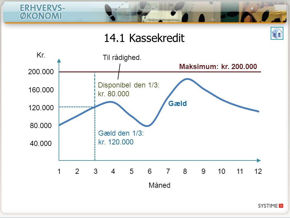 14.1 Kassekredit Kr. Til rådighed. Maksimum: kr. 200.000 200.000