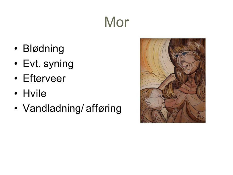 Mor Blødning Evt. syning Efterveer Hvile Vandladning/ afføring