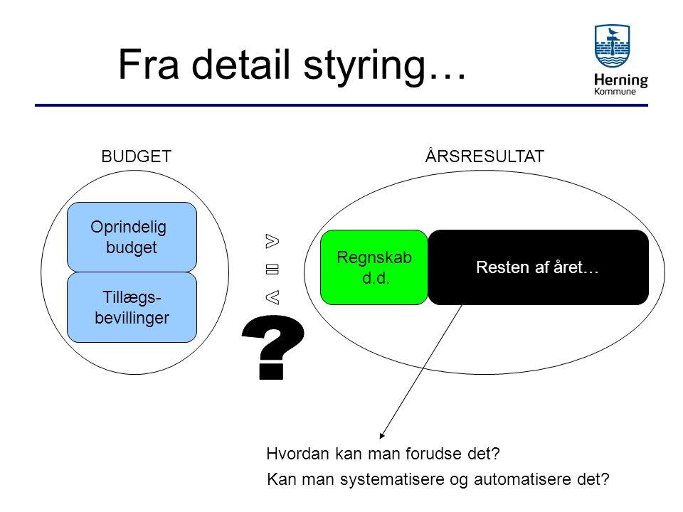 Fra detail styring… BUDGET ÅRSRESULTAT Oprindelig budget Tillægs-