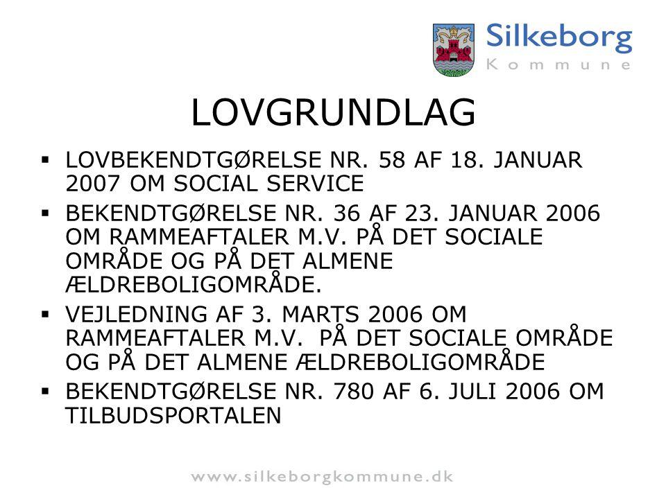 LOVGRUNDLAG LOVBEKENDTGØRELSE NR. 58 AF 18. JANUAR 2007 OM SOCIAL SERVICE.