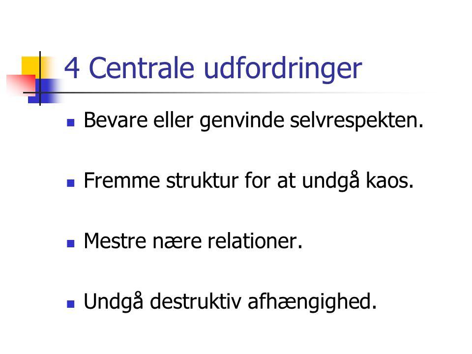 4 Centrale udfordringer