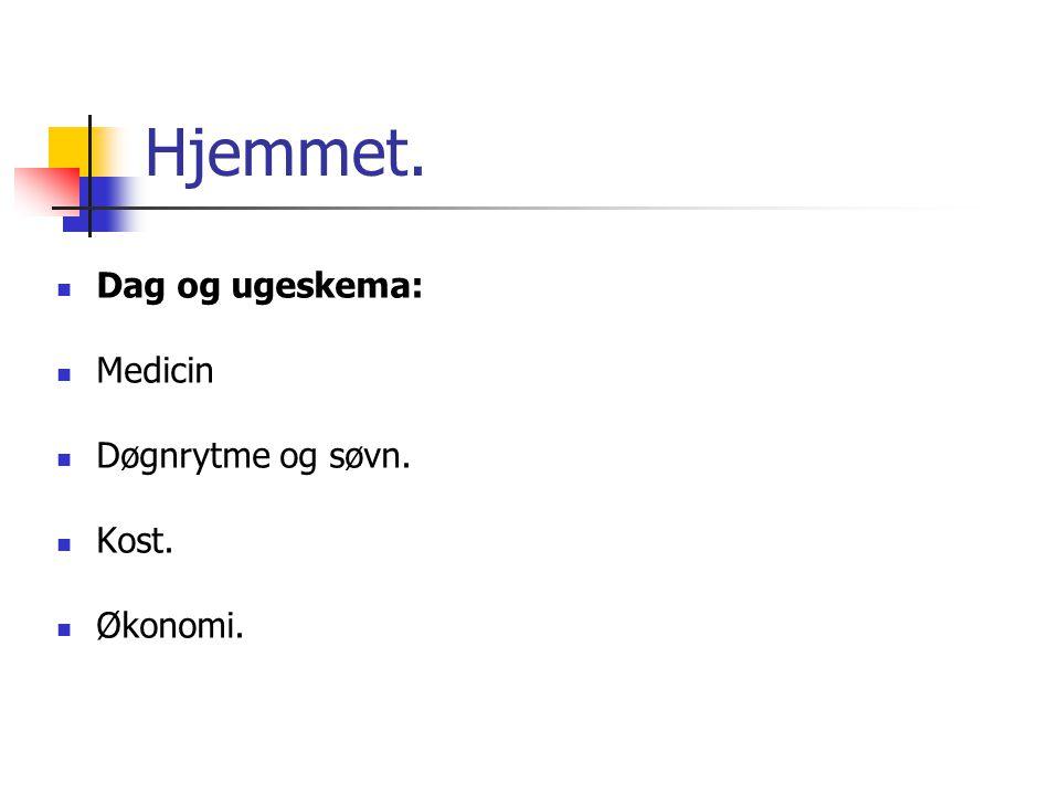 Hjemmet. Dag og ugeskema: Medicin Døgnrytme og søvn. Kost. Økonomi.
