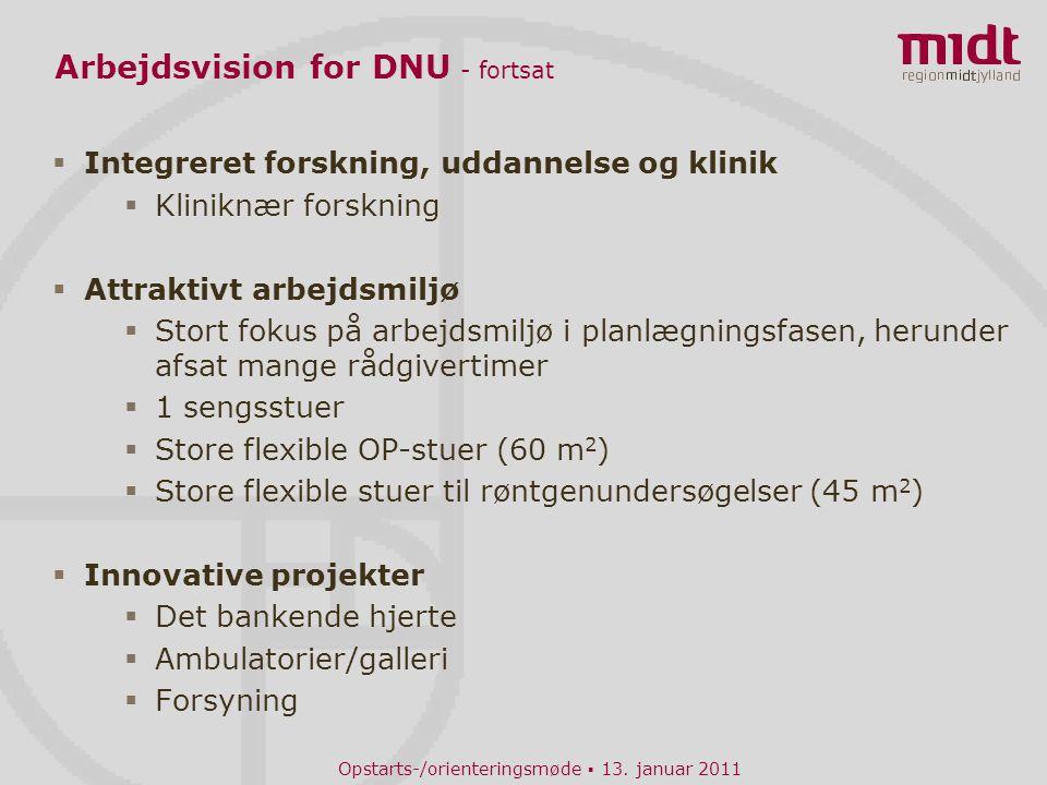Arbejdsvision for DNU - fortsat