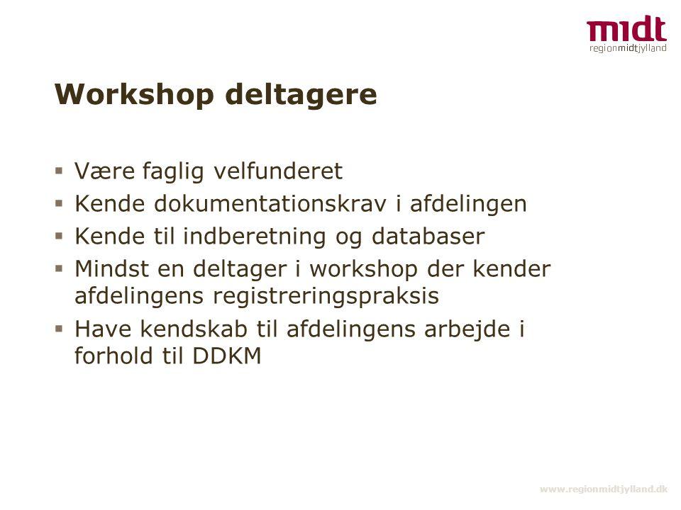 Workshop deltagere Være faglig velfunderet