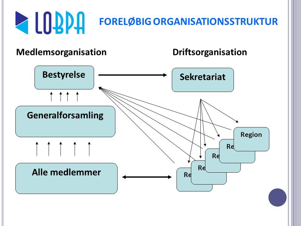 FORELØBIG ORGANISATIONSSTRUKTUR
