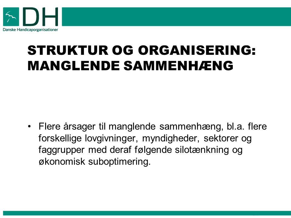 STRUKTUR OG ORGANISERING: MANGLENDE SAMMENHÆNG