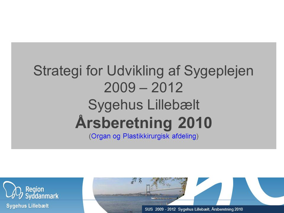 Årsberetning 2010 Strategi for Udvikling af Sygeplejen 2009 – 2012