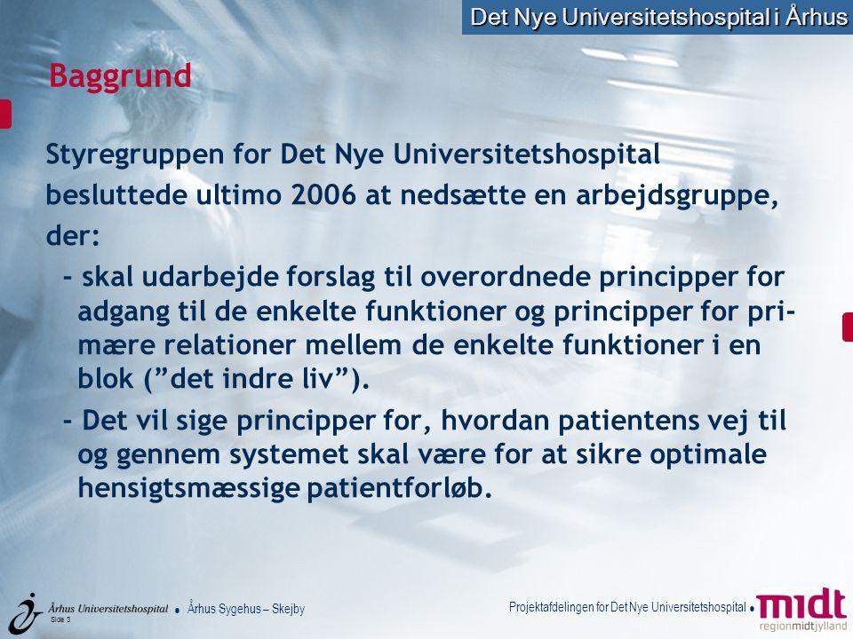 Baggrund Styregruppen for Det Nye Universitetshospital