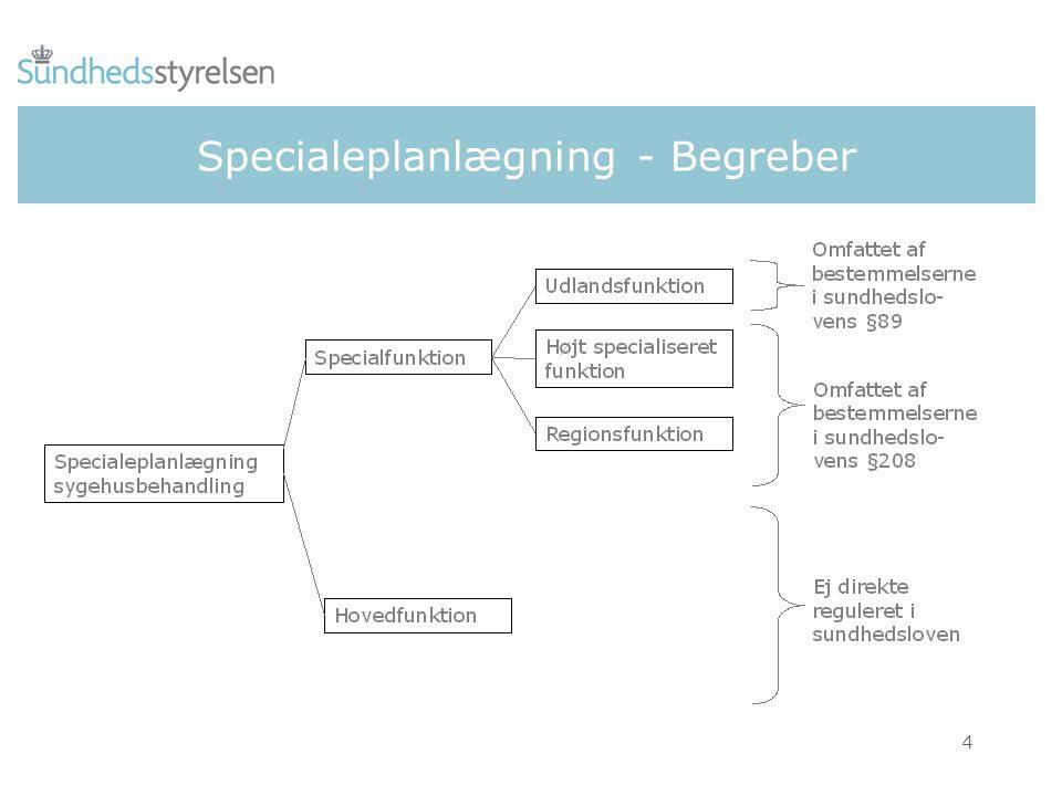 Specialeplanlægning - Begreber