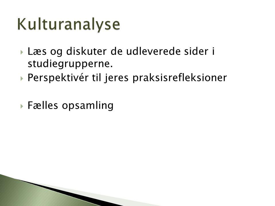 Kulturanalyse Læs og diskuter de udleverede sider i studiegrupperne.