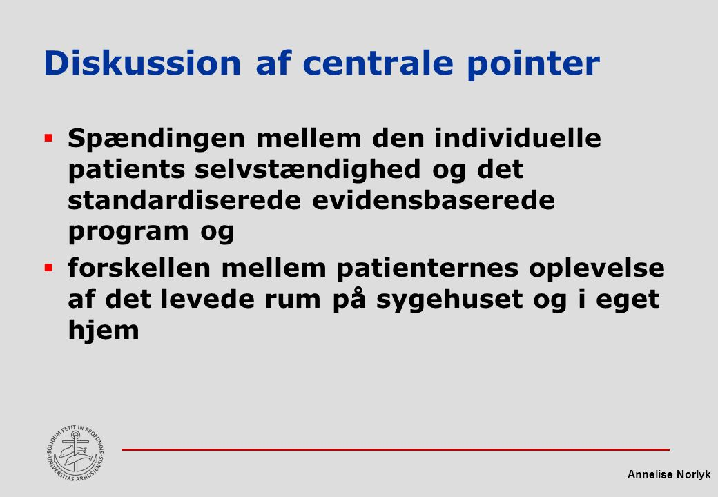 Diskussion af centrale pointer