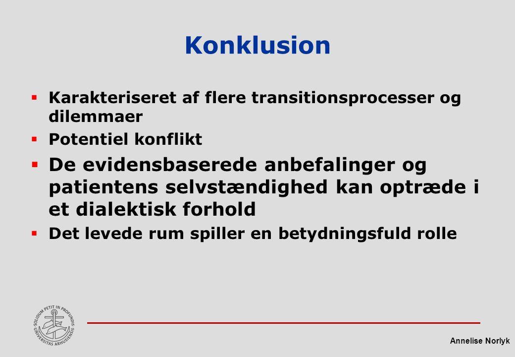 Konklusion Karakteriseret af flere transitionsprocesser og dilemmaer. Potentiel konflikt.