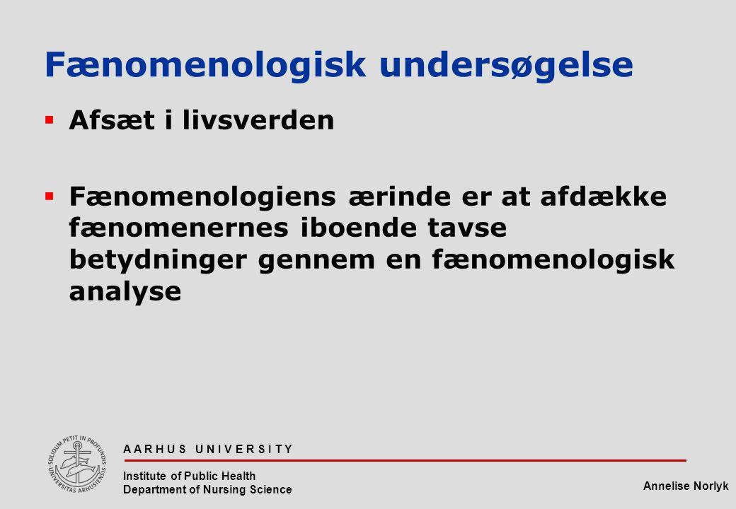 Fænomenologisk undersøgelse