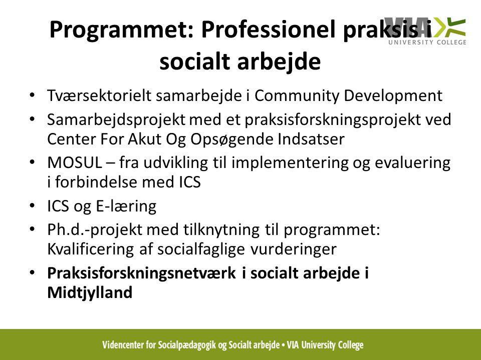 Programmet: Professionel praksis i socialt arbejde