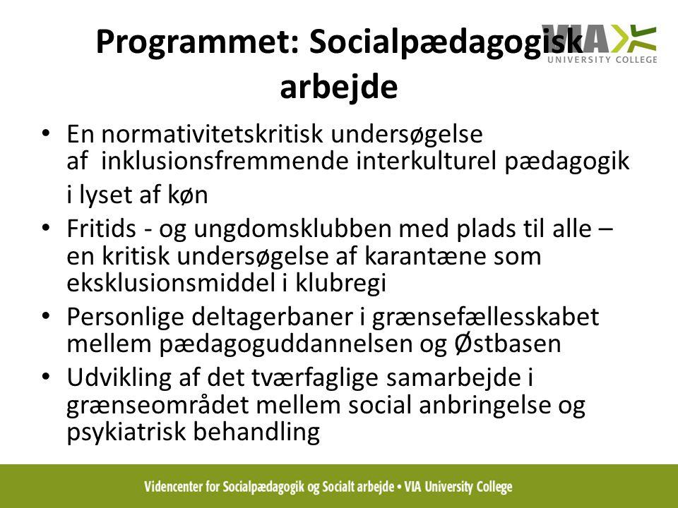 Programmet: Socialpædagogisk arbejde