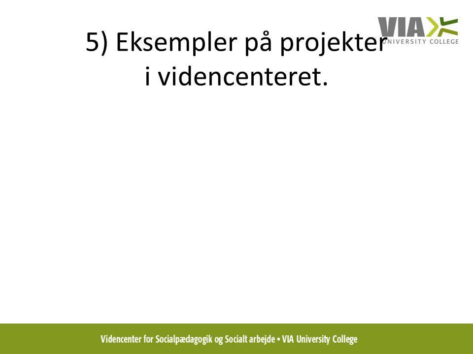 5) Eksempler på projekter i videncenteret.