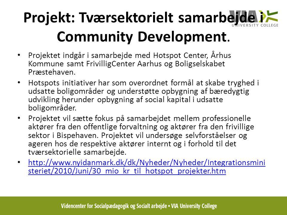 Projekt: Tværsektorielt samarbejde i Community Development.